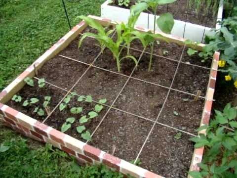 Our New Square Foot Garden Part 5 Season 1 Ep5 for beginners