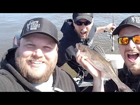 LIVE- Mississippi River Walleye- How To Fish Walleye On The River