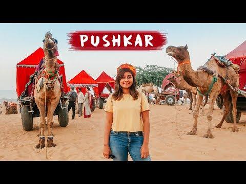 EXPLORING PUSHKAR | Pushkar Camel Fair 🐪  | Things to do in Pushkar, Rajasthan | Kritika Goel