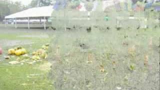 dożynki wojewódzkie włodawa2008