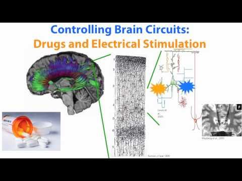 Ed Boyden on Optogenetics -- selective brain stimulation with light