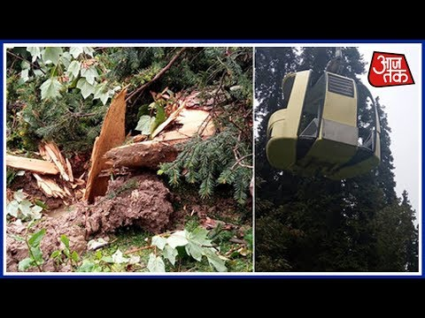 7 Including Delhi Family Killed As Tree Falls On Cable Car Rope In Gulmarg