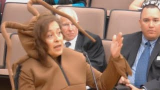 Woman Dresses Like Giant Cockroach in Bizarre Texas City Council Meeting