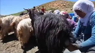 Yürek Yakan Ağlatan Dertli Kürtçe Türküler - Uzun Hava Kürtçe Damar / Kurdısh Musıc