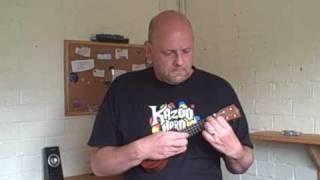 Pocket ukulele - Lets do it (Lets fall in love)