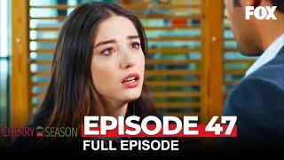 Cherry Season Episode 47