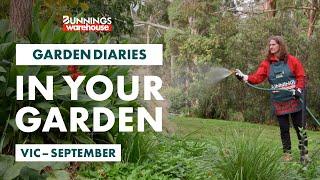 Gardening in September | VIC | Bunnings Garden Diary