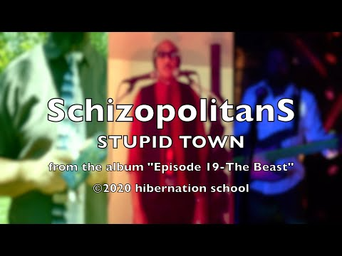 Stupid Town by Schizopolitans