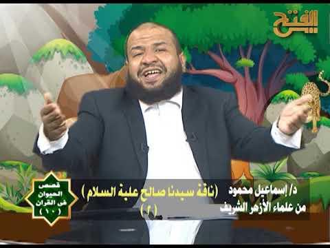 الفتح للقرآن الكريم:قصص الحيوان في القرآن | ناقة سيدنا صالح ج2 | الحلقة 10