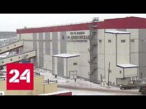 """Путин обсудил работу угледобывающей компании """"Колмар"""" с ее гендиректором - Россия 24"""