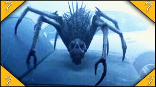 Why do the CREATURES from THE MIST only stay in the mist