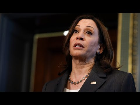 VP Kamala Harris has 'basically come out and said the United States is an illegitimate nation'