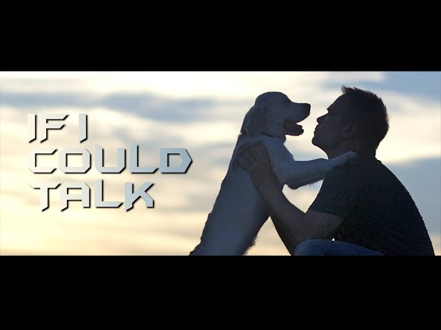 IF I COULD TALK / BEST DOG FILM / OFFICIAL VIDEO