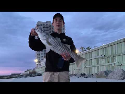 MULTI-SPECIES Fishing The Atlantic City JETTIES [3 New Species]