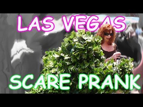 THE FUNNIEST BUSHMAN SCARE PRANKS EVER - The Las Vegas Bushman Prank - Episodes 5-8 FUNNY VIDEO