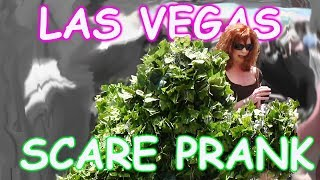 THE FUNNIEST BUSHMAN SCARE PRANKS EVER - The Las Vegas Bushman Prank - Episodes 5-8 FUNNY VIDEO