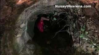 Nusaybin'de Kuyuya düşen inek, itfaiye ekipleri kurtardı
