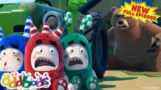 ODDBODS | The Apple Didnt Keep The Bear Away! | NEW Full Episode | Cartoons For Children