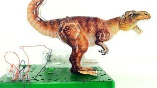 Tyrannosaurus Rex Electric Motor 3D Puzzle - Dinosaur model of T-Rex - 3D Dinosaurs Speed build