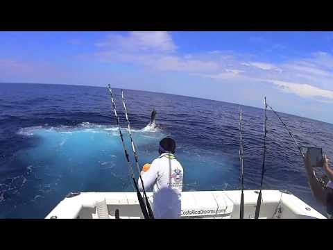 FinAddicts Offshore World Championship 2014 - Costa Rica