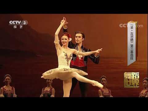 2017.11.10 Excerpt of Don Quixote Act3 Elena Evseeva, Artem Ovcharenko