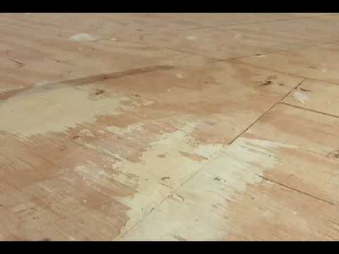 How To Prep A Wood SubFloor YouTube - Install vinyl flooring over plywood subfloor