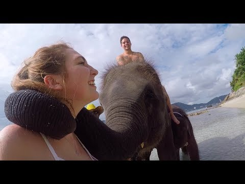 SWIMMING WITH ELEPHANTS // PHUKET, THAILAND