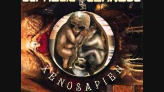 Cephalic Carnage-Xenosapien