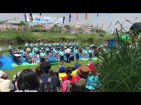 Japanese Carp Kite Festival