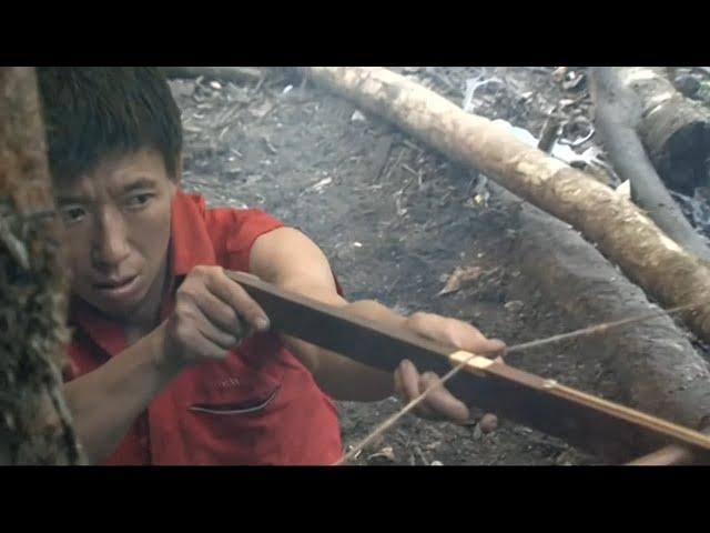 Chasse à la chauve-souris dans la jungle chinoise