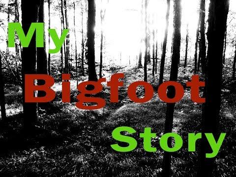 My Bigfoot Story