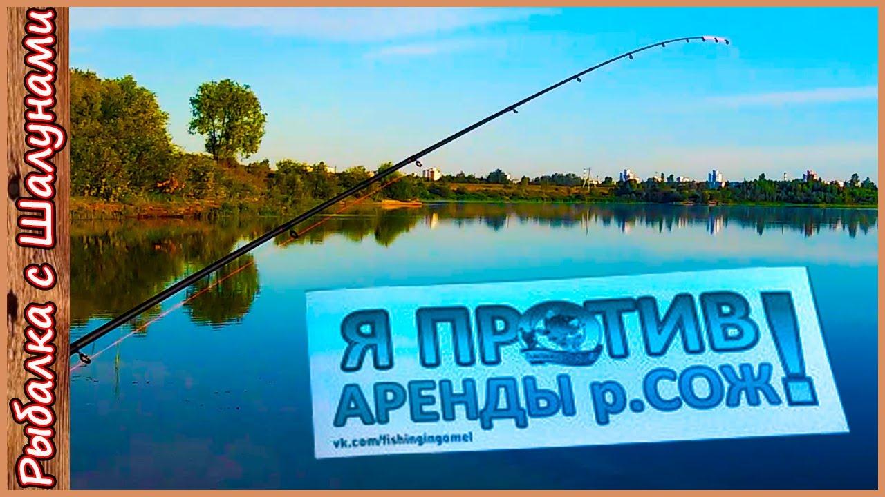 рыбалка в белоруссии на днепре фидером