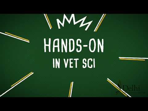 Hands-on Learning in the Veterinary Science Technology Program at SUNY Delhi