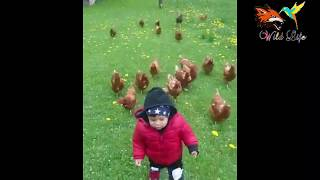 funny short video clips | short funny videos for whatsapp | funny video download | Something new