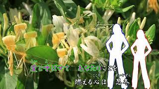 麻生詩織 - 忍冬