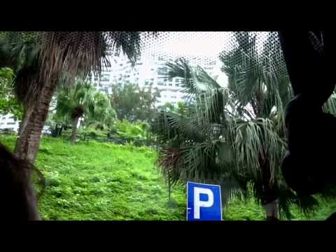 curatorsim의 세계문화답사 - 홍콩(hongkong)3탄 리펄스베이
