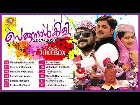 പെരുന്നാൾകിളി 2017 | Shafi Kollam, Thajudheen Vadakara Latest Mappila Album Songs 2017