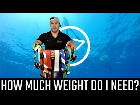 How Much Weight Do I Need? - Florida Freedivers
