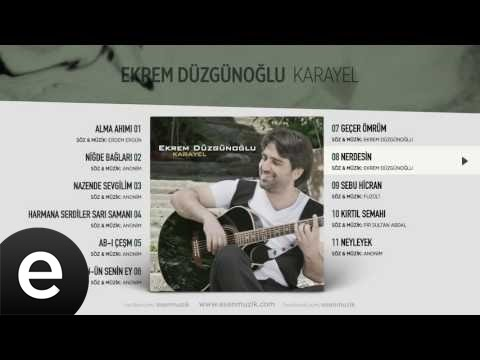 Nerdesin (Ekrem Düzgünoğlu) Official Audio #nerdesin #ekremdüzgünoğlu