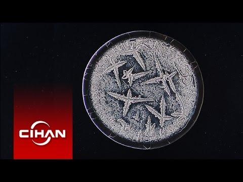 Gözyaşındaki 'sanat' mikroskobik fotoğraflara yansıdı