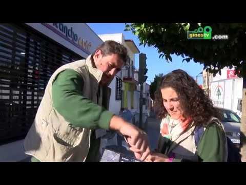 La Mancomunidad inicia en Gines una campaña para fomentar la limpieza y el reciclaje