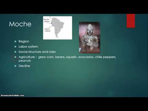 Andean Civilizations 200 to 1500 CE