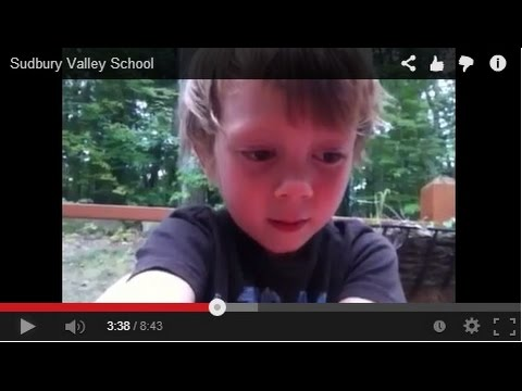 Sudbury Valley School ~ A Democratic School With No Class 46/90 ILN 90 Day Video Challenge