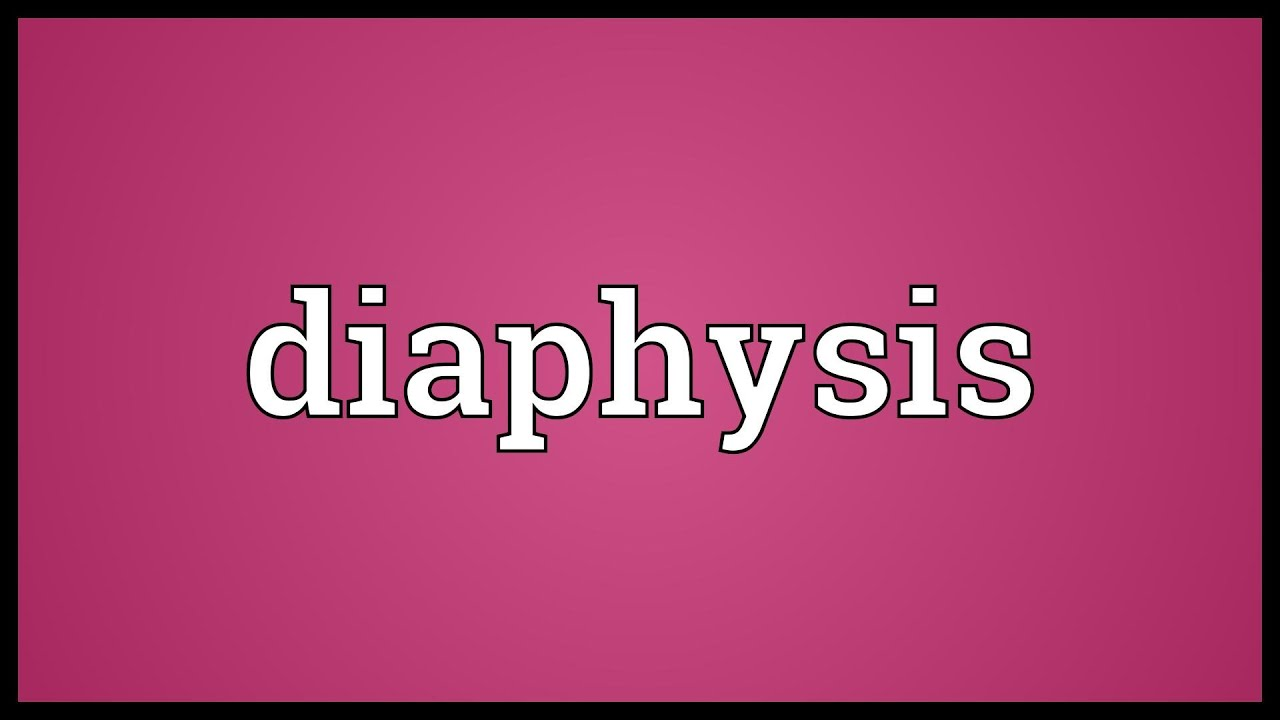 diaphysis meaning - youtube, Cephalic Vein