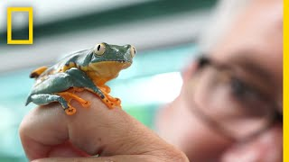 He Spent His Career Studying a Frog. Then He Discovered Its True Identity. | Short Film Showcase
