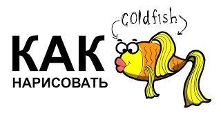 Как нарисовать золотую рыбку(Как нарисовать рыбу поэтапно карандашом для начинающих за короткий промежуток времени. http://youtu.be/NuhsVMVssWc..., 2015-06-07T08:14:10.000Z)