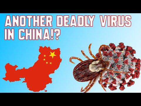 Another Deadly Virus in China!? | Novel Bunyavirus