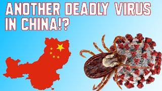 Another Deadly Virus in China!?   Novel Bunyavirus