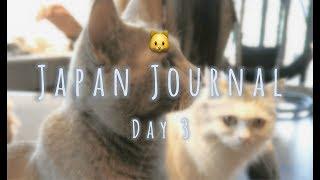 Video Shibuya, Mocha Cat Cafe | Japan Journal | Day 3 download MP3, 3GP, MP4, WEBM, AVI, FLV Juli 2018