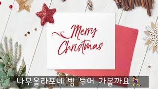 [천리포수목원 크리스마스] 나무올라포와 함께 떠나는 크…